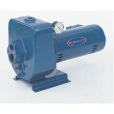 Pompe jet berkeley 1 hp  10lt2 (puits profond)